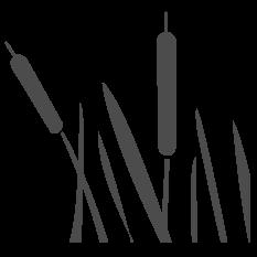Town of Scarborough logo